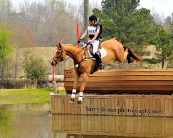 large chestnut thoroughbred gelding jumping down into the water after a jump